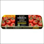 Levington Tomorite Giant Tomato Planter