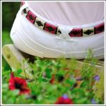 Pioneros Narrow Polo Belt - Berry, White & Black Stripe 1