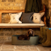 Le Chameau Padded Dog Bed Vert Chameau 2
