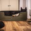 Le Chameau Padded Dog Bed Vert Chameau 5