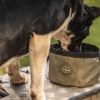 Le Chameau Portable Dog Bowl Vert Chameau 3