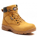 Dickies Corbett Women's Honey Safety Boot 1