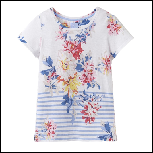Joules Nessa White Stripe Whitstable Floral Print Jersey T-Shirt 1