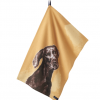 Joules Thea Yellow Set of 2 Chocolate Labrador-Pug Tea Towels 3