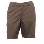Regatta Crossfell II Shorts Roasted