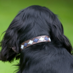 Pioneros Polo Dog Collar - Pampas Cross Navy & Blue 2