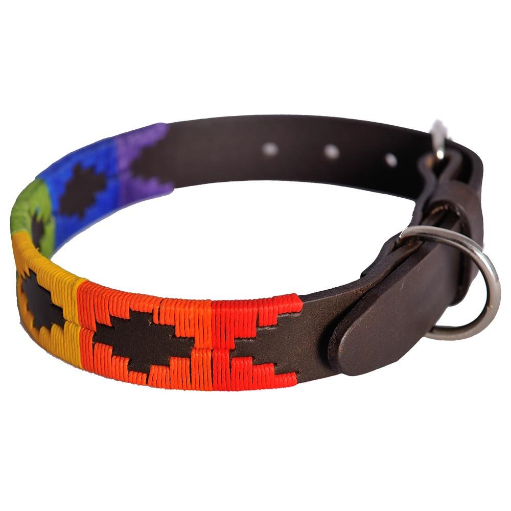 Pioneros Polo Dog Collar - Rainbow 1