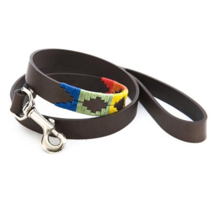 Pioneros Polo Dog Lead - Rainbow 1