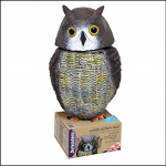 STV Bird Deterrent Wind Action Owl 3