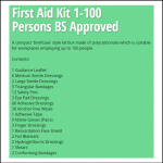 Scan 1-100 Persons First Aid Kit 2