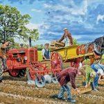 Seeding the Crop 250pc Puzzle